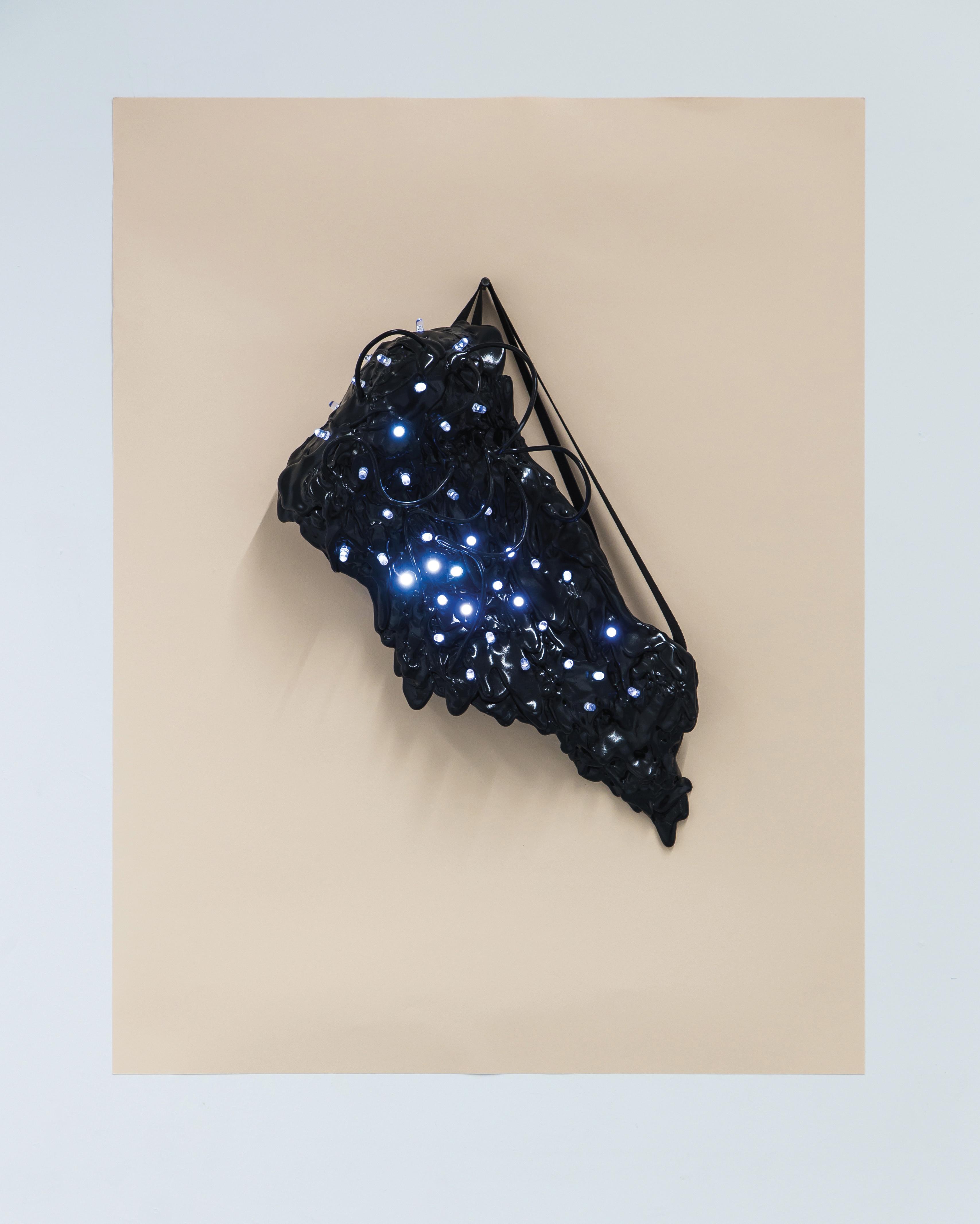 Bluish Black Incirrina (1) recadrer